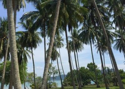 Thailand_Luxury_Real_Estate_Beachfront_Land_Phuket_Ko Yao Noi_For_Sale_Land 2 (32)-158czq0