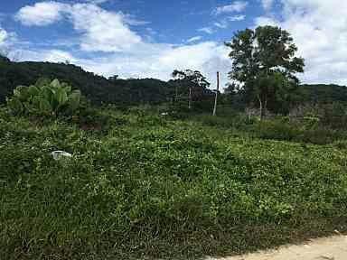 Asia360 Phuket Land Plot (4)-11i7um7
