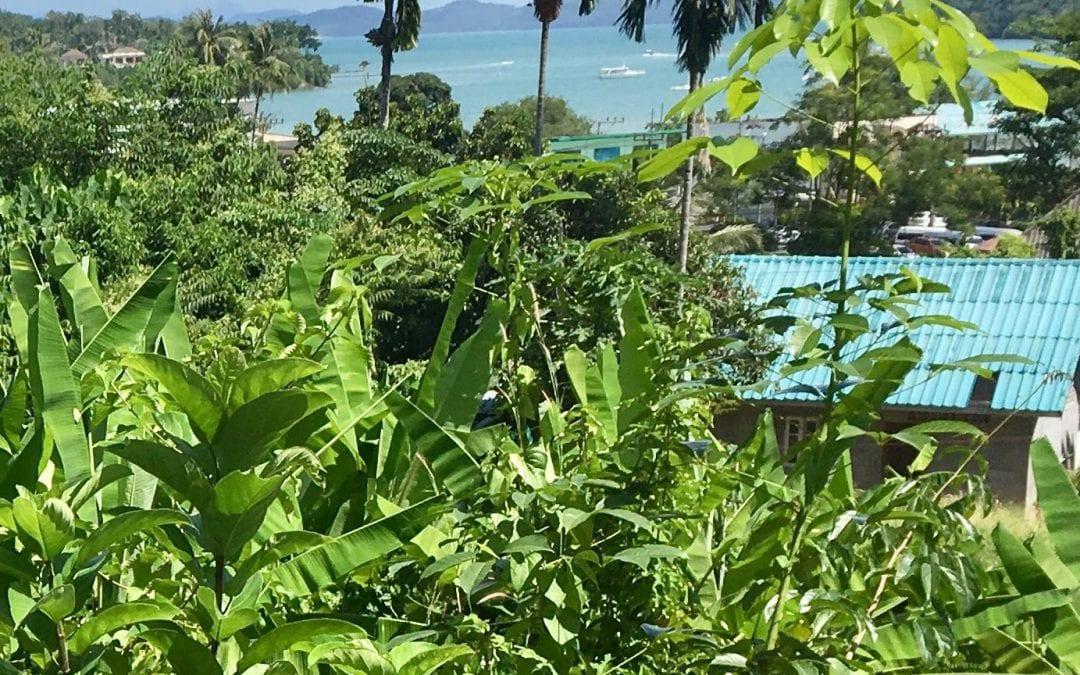 Sea view Land Plot for two Villas Ao Po Phuket, Thailand
